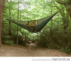 Hammock Tent- this would be so much more comfortable than the floor. unless you woke up on it...