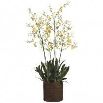 Geneva Orchids available at http://www.seniorfurnishings.com/