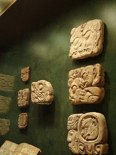 Mayan glyphs in a museum display. Would love to know where they are.
