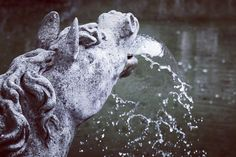 So langsam können wir uns wieder auf die Wasserspiele in der Eremitage freuen.  The fountains in the hermitage will soon be uncovered.  Danke an @sammilie74 für das Bild.  #weltderwilhelmine #theculturetrip #culture #culturetravel #instagram #instatravel #igersfranconia #bayreuth #franken #franconia #14cities #visitfranconia #europetrip #travel #travelpic #germany #discover #europe #tlpicks #bestgermanypics #meindeutschland #ig_germany #living_europe #in_germany #cbviews #germanculturephotos…