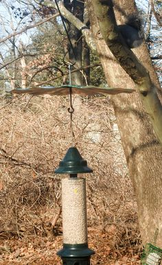 Baffling The Squirrel Buster Plus Feeder: The Squirrel Buster Plus is a Fantastic feeder but I still wanted a baffle to stop the squirrels from continuing to try it.