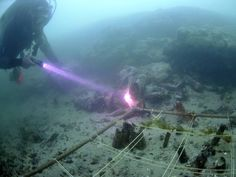 The remarkable archaeological underwater discovery that could open up a new chapter in the study of European and British prehistory - History - Life and Style - The Independent