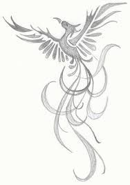 Image result for Phoenix Rising From Ashes Coloring Page