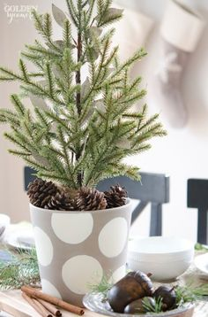 Miniature Evergreen Christmas Centerpiece by The Golden Sycamore