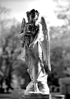 Picture of Series of Cemetery Angels and monuments from New Orleans stock photo, images and stock photography. Cemetery Angels, Cemetery Statues, Cemetery Art, New Orleans Cemeteries, Old Cemeteries, Graveyards, Stone Statues, Buddha Statues, I Believe In Angels