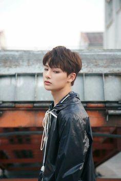 Resultat d'imatges de stray kids grow up photoshoot Lee Min Ho, Minho, Busan, Sung Lee, Pre Debut, Kids Series, Kids Growing Up, Wattpad, Lee Know