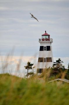 Share Your PEI - Canada Pei Canada, Prince Edward Island, Anne Of Green Gables, Wizards, Lighthouses, Photo Contest, Vacation Destinations, Summertime, Sailing