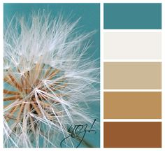 Color inspiration - turquoise(or shades of blue) & brown(shades of brown) and white. Plus I have a cute paper weight w/a dandelion already that makes me happy.