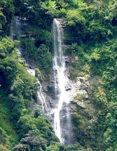 panajachel, guatemala national reserve waterfall <3