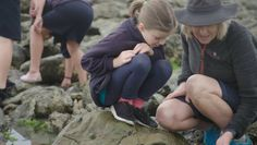 Kaikōura students are getting to know a marine world which used to be hidden beneath the waves. Senior Student, The Visitors, High School Students, Primary School, Young People, Science And Technology, Studying, Marines, Raising