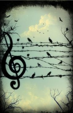 bird, birds, clouds, music, music note, sky