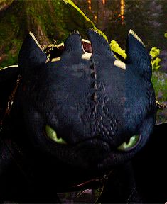how to train your dragon dragon httyd toothless hiccup astrid astrid hofferson Night Fury avatava graphrofberk