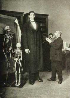 The Russian giant Fyodor Makhnov being examined by anthropologists in London, c. 1905. S)