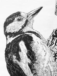 Detail Grote Bonte Specht 2017 Whale, Fine Art, Illustration, Animals, Whales, Animaux, Illustrations, Animal, Animales
