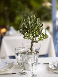 Ideas Olive Tree Wedding Table Decor For 2019 Tree Centrepiece Wedding, Tree Centerpieces, Wedding Table Decorations, Christmas Tree Decorations, Decor Wedding, Wedding Ceremony, Olive Wedding, Tree Table, Deco Floral