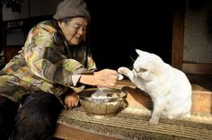 Misao and Fukumaru the cat