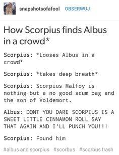 Scorpius x Albus lool