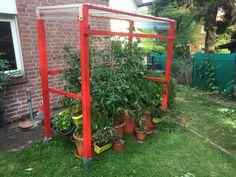 Tomato House