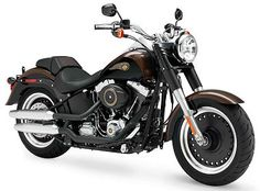 Harley-Davidson 1690 SOFTAIL FAT BOY SPECIAL 110th Anniversary FLSTFB