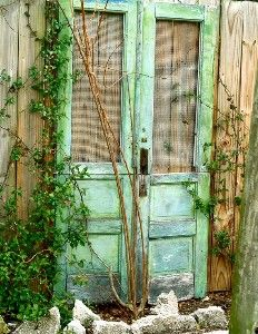 Love this too! add some depth to the wooden fence outside.