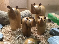 Lathe Projects, Wood Turning Projects, Wooden Bird, Wooden Toys, Wood Animal, Woodworking Shop, Wood Burning, Carving, Fruit