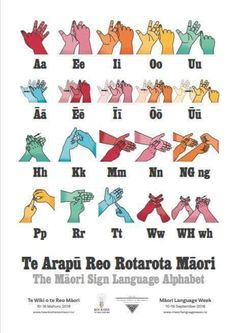 NZ Maori SL handhapes International Sign Language, Sign Language Alphabet, Early Childhood Education, Preschool Ideas, Languages, Teaching, Signs, Maori, Early Education