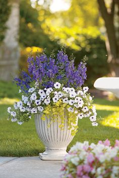 Experienced container gardeners have a formula-- Thriller, Filler and Spiller-- to describe the elements of a successful floral container. Our friends at Proven Winners give more details in this how-to.