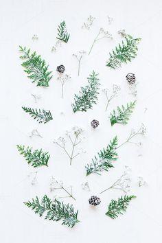 Christmas pattern . Christmas Patterns
