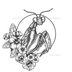 Buy Mantis Insect Engraving Vector Illustration by AlexanderPokusay on GraphicRiver. Kritzelei Tattoo, Tattoo Drawings, Art Drawings, Engraving Illustration, Tattoo Illustration, Mantis Tattoo, Orchid Mantis, Mantis Religiosa, Insect Tattoo