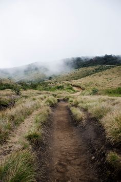 Horton Plains Haputhale - I took it when I waked down to the hill