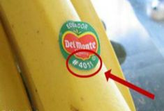If You See This Label On The Fruit Do Not Buy It At Any Cost – This Is Why » Healthy Life Healthy Food
