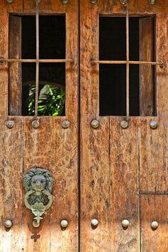 Lion's head: Cartagena de Indias, Colombia