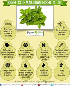 Health Benefits of Marjoram Essential Oil | Organic Facts ☻ ☺ ☂  ✿