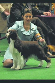 Kentucky teens take center stage at Westminster dog show