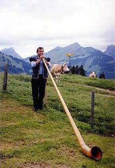 Traditional alpen horn