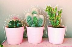 Cute little cactus plants for the bedroom Cactus Plante, Plant Aesthetic, Plants Are Friends, Cactus Y Suculentas, Cacti And Succulents, Potted Plants, House Plants, Planting Flowers, Floral
