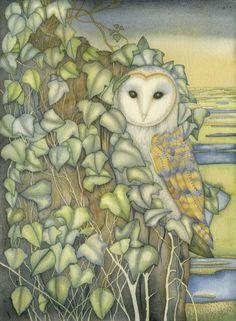 'Barn Owl at Stifkey' by Kate Green