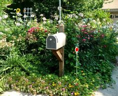 I needed an idea for the vintage mailbox my husband bought at the thrift store for my small garden tools. I like how this mailbox is surrounded with flowers. Very nice! Mailbox Garden, Diy Mailbox, Mailbox Landscaping, Backyard Landscaping, Landscaping Ideas, Mailbox Ideas, Mailbox Makeover, Vintage Mailbox, Landscape Concept