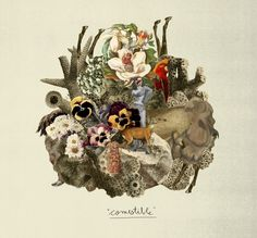 les collages de Max o matic sur pointcrea. Graphic Art, Graphic Design, Album Covers, Rooster, Indie, Digital Art, Cartoon, Creative, Painting