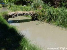 Les cigales n'étaient pas encore réveillées, ni le soleil de plomb, ni le fort Mistral, une journée idéale pour sortir les vélos et découvrir le Canal de Carpentras. Il s'agit d'un canal d'irrigation dont la prise d'eau se fait dans la Durance à Mérindol,... Durance, Irrigation, Photos, River, Outdoor, Flags, Digital Art, Going Out, Pictures