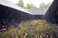 Hortus Conclusus, Serpentine Pavilion 2011, London. Garden designer: Piet Oudolf. Architect: Peter Zumthor