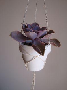 Macrame mini plant hanger. Succulent  plant by laLunaCreazioni