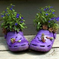 """Upcycle your old Crocs into flower pots."" Please do not. Crocs are ugly enough on feet, they look no better as outdoor 'decoration'"