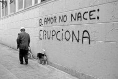 El amor no nace: erupciona.