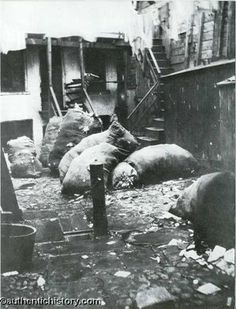 Five Points NYC : Bottle Alley late 1800s
