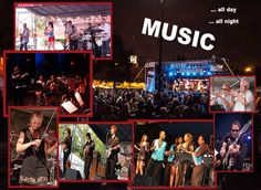Music day and night at the Taste of Polonia Festival 2014