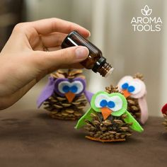 How adorable is this... DIY Owls-diffusers. Instructions.