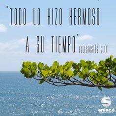 Confía en los tiempos de Dios. Se que lo que el tiene planeado para mi vida no importa lo que pase el lo hace.
