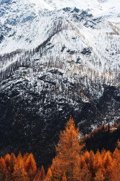 #fall #mountains