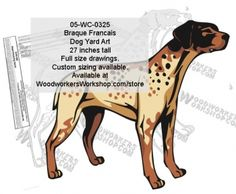 05-WC-0325 - Braque Francais Yard Art Woodworking Pattern The Braques français are hunting dogs, from a very old type of gun dog used for pointing the location of game birds for a hunter. They are popular hunting dogs in France, but are seldom seen elsewhere. Temperament of individual dogs can vary, and all dogs must be well socialized with people and other animals at an early age in order to be a good pet. Average height is 21 inches at the withers. Drawings are full size.